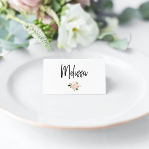 Blush Hydrangeas Place Cards